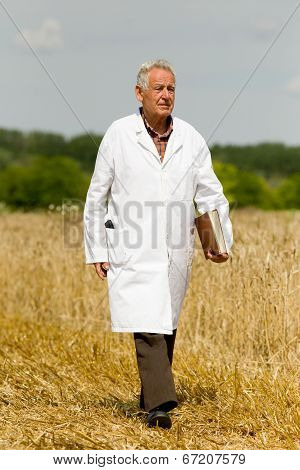 Agronomist On Wheat Field