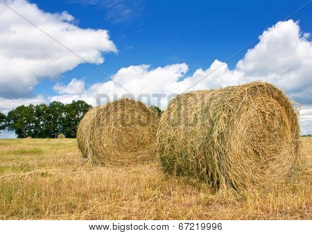 hay rolls on filed in nice cloudy day