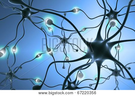 neurons, transferring pulses and generating information.