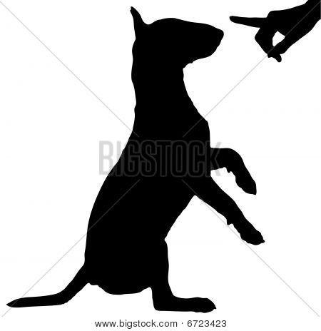 Dog Being Reprimanded.
