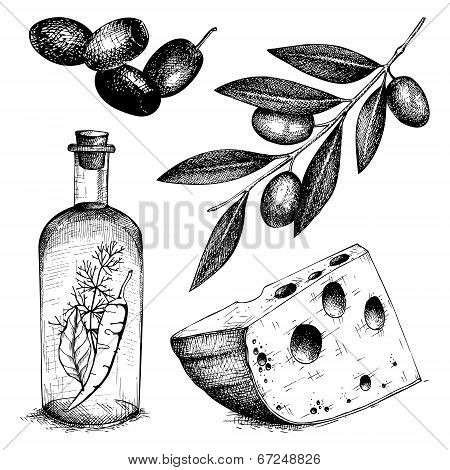 Decorative Engraved Olive  Isolated On White