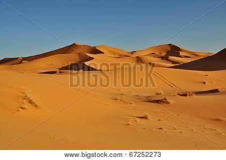 Merzouga Desert In Morocco
