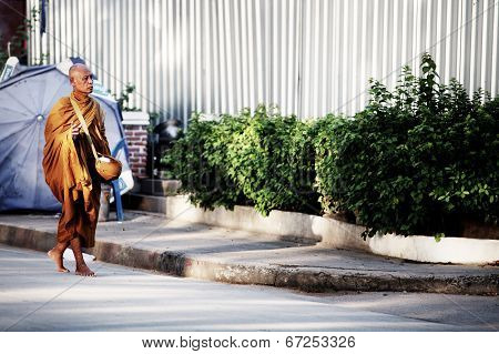 Morning Monk