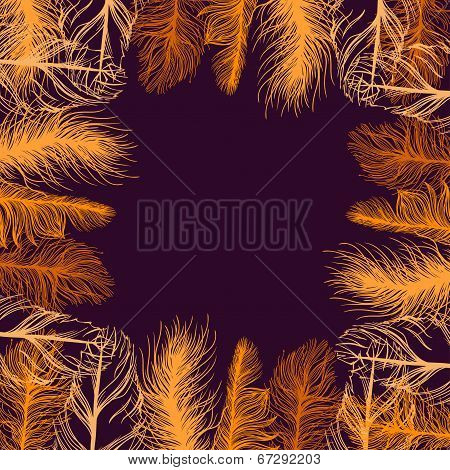 Set frame of colourful feathers. EPS background