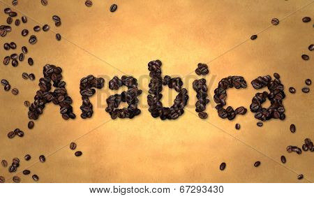 Arabica Coffee Bean on Old Paper