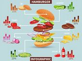 picture of hamburger  - Hamburger ingredients with meat cheese tomato salad bun cucumber infographic vector illustration - JPG