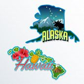 picture of hibiscus  - Alaska Hawaii retro state facts illustrations - JPG