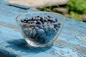 pic of honeysuckle  - Sunny honeysuckle berries in bowl on table - JPG