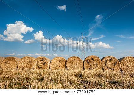 Smiling straw bale