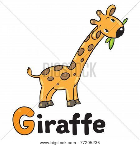 Little funny giraffe, for ABC. Alphabet G