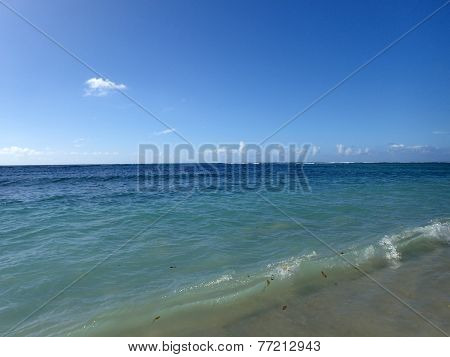 Calm Water Of The Pacific Ocean On The Shore Of Kahala Beach As Small Wave Full Of Leafs Breaks