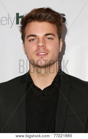 LOS ANGELES - NOV 8:  Josh Golden at the 3rd Annual Unlikely Heroes Awards Dinner And Gala at the Sofitel Hotel on November 8, 2014 in Beverly Hills, CA