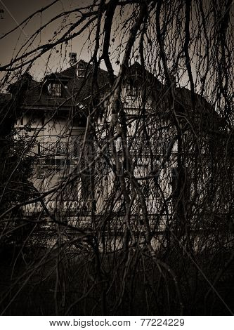 Scary Branches Dry Tree, And Haunted House