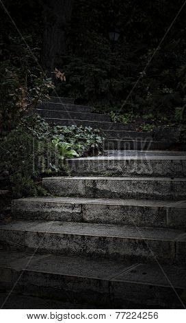 Mystery Of The Steps. Mystical Photo.