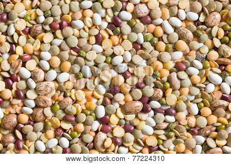 the texture of various legumes