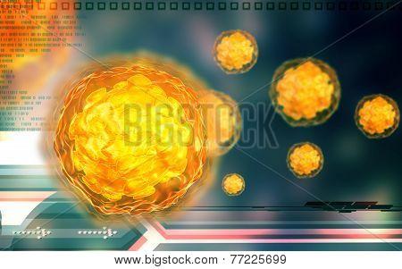 Polio virus