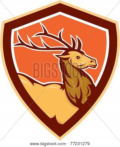 Deer Stag Buck Head Shield Retro