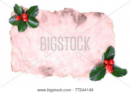 Empty paper with European Holly (Ilex aquifolium) with berries, isolated on white