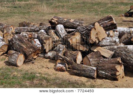 Pile Of Large Birch Chocks
