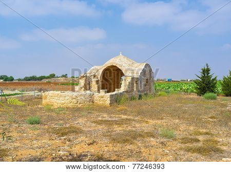 The Ruins In The Field