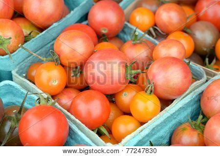 Organic Grape Tomato