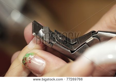 Cutting Fresh Nails