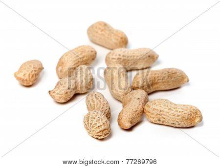 Unpeeled Peanuts. Selective Focus.