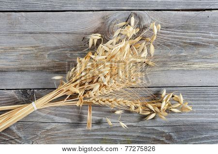 The oats Border as a wooden background