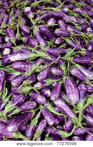 Fresh Organic Fairytale Eggplant Background, Photo Taken At Local Farmers Market