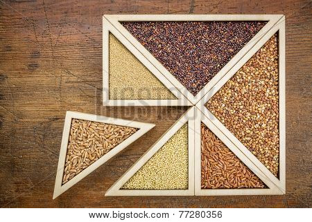 wheat berries against gluten free alternative grains (quinoa, millet, amaranth, buckwheat and rice) - wooden tray inspired by tangram puzzle