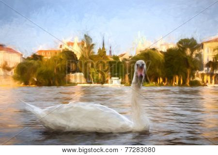 Swan on river painting