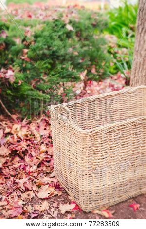 Empty Basket In Autumn Leaves