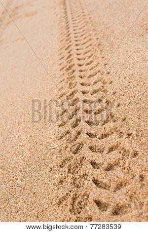 Tyre Tread Marks On Beach
