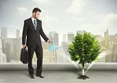 pic of water-saving  - Businessman watering green tree on city background concept - JPG