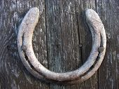 stock photo of horseshoe  - Old lucky horseshoe nailed to a shed door with evidence of wear on the horseshoe - JPG