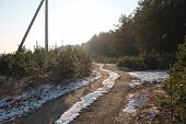 pic of paysage  - first snow on forest sand road surround the pine trees - JPG