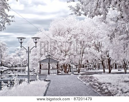 Moscow. Municipal Park. Infra-red Photo