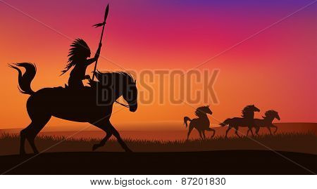 Wild Horses And Indian