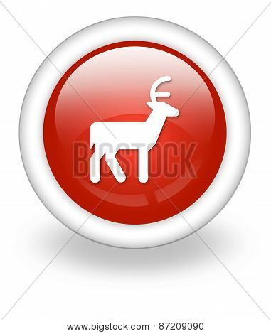 Icon, Button, Pictogram Deer