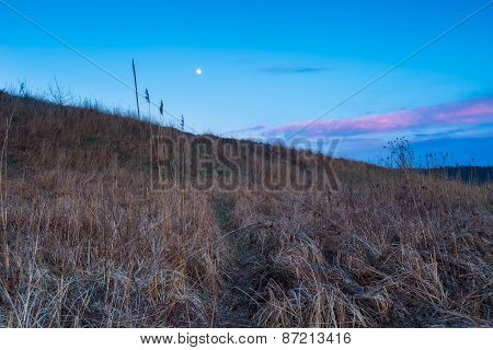 Moonrise Over Grassland