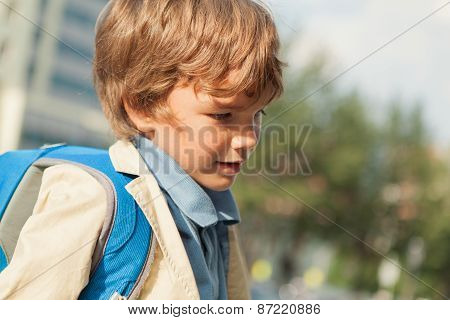 Portrait Of Schoolboy With  Backpack