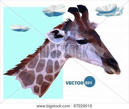 vector portrait of a giraffe