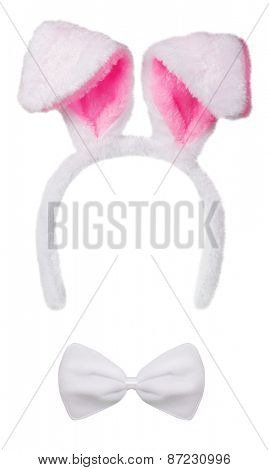 Rabbit ears isolated on white background
