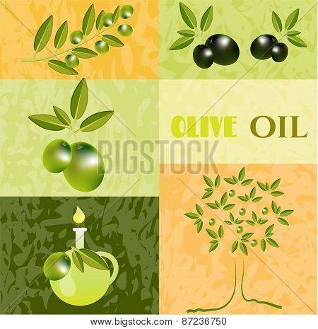 Vintage card with olives, green twig with olives, olive tree and carafe, text Olive Oil