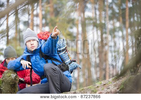 Male hiker pointing in forest
