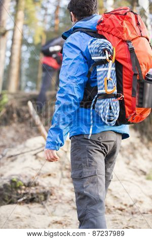 Rear view of male hiker with backpack standing in forest