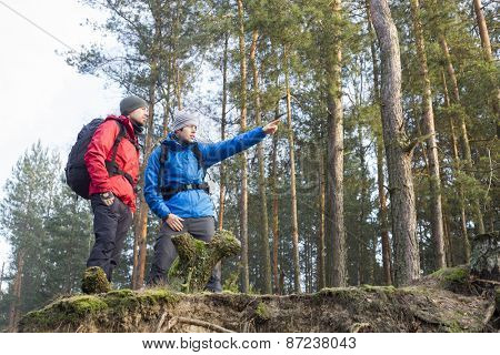 Young male hiker showing something to friend in forest