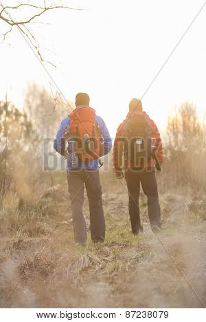 Rear view of male hikers with backpacks standing in field
