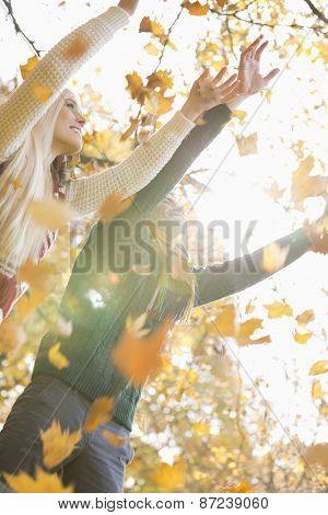 Couple with arms raised enjoying falling autumn leaves in park