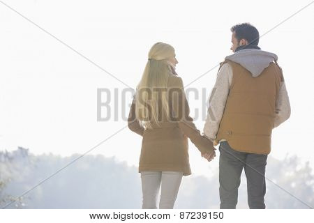 Rear view of couple holding hands while looking at each other in park